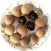 longan- health food
