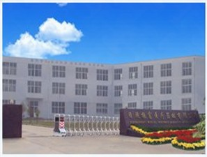 Rizhao zhenfu medical devices co.ltd