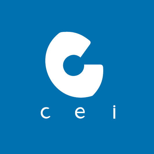 CEI Technology Inc